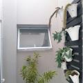 janelas-1